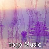 41 Auras Of Peaceful Mind by Yoga Music