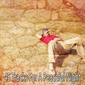 45 Tracks For A Peaceful Night de Dormir