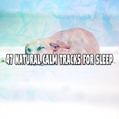 47 Natural Calm Tracks For Sleep by Bedtime Baby