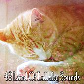 42 Land Of Lullaby Sounds von Lullaby Land
