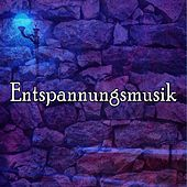 50 Regular Sounds From Nature by Entspannungsmusik