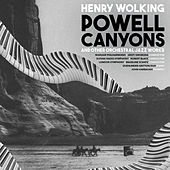 Henry Wolking: Powell Canyons & Other Orchestral Jazz Works by Various Artists