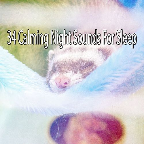 34 Calming Night Sounds For Sleep by Lullaby Land
