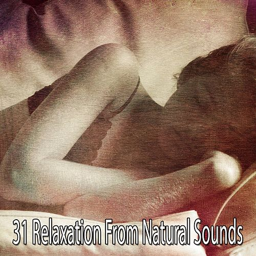 31 Relaxation From Natural Sounds de Relajacion Del Mar