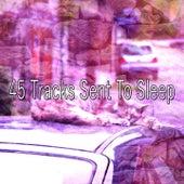 45 Tracks Sent To Sleep by Rockabye Lullaby