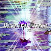 Binaural Peace by Binaural Beats Brainwave Entrainment