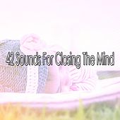 42 Sounds For Closing The Mind by Sounds of Nature Relaxation