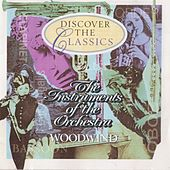 The Instruments Of The Orchestra - Woodwind- by Various Artists