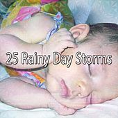 25 Rainy Day Storms by Rain Sounds (2)