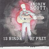 13 Birds Of Prey by Andrew Scott