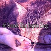 46 Sounds That Inspire Sleep by Sounds of Nature Relaxation