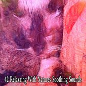 42 Relaxaing With Natures Soothing Sounds by Relajacion Del Mar