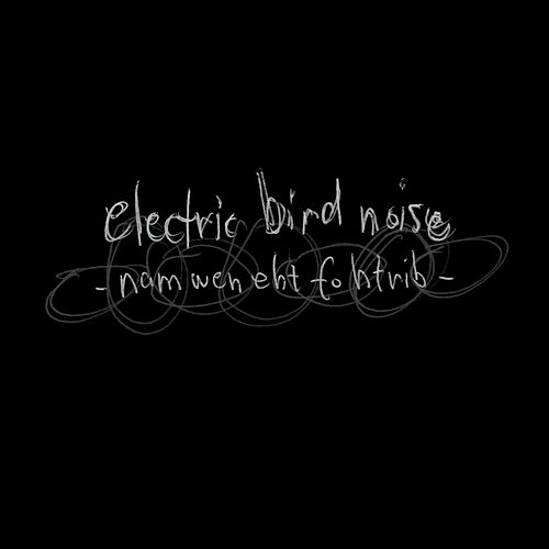 Nam Wen eht fo Htrib by Electric Bird Noise