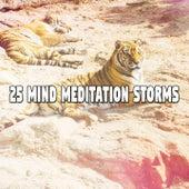 25 Mind Meditation Storms by Rain Sounds Sleep