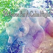 34 Auras For A Calm Night by Sleep Sounds of Nature