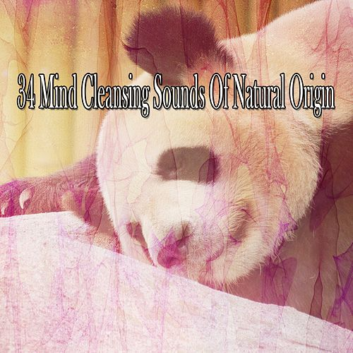 34 Mind Cleansing Sounds Of Natural Origin by S.P.A