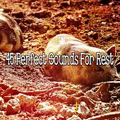 45 Perfect Sounds For Rest by White Noise For Baby Sleep