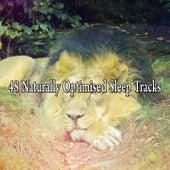 48 Naturally Optimised Sleep Tracks by White Noise For Baby Sleep