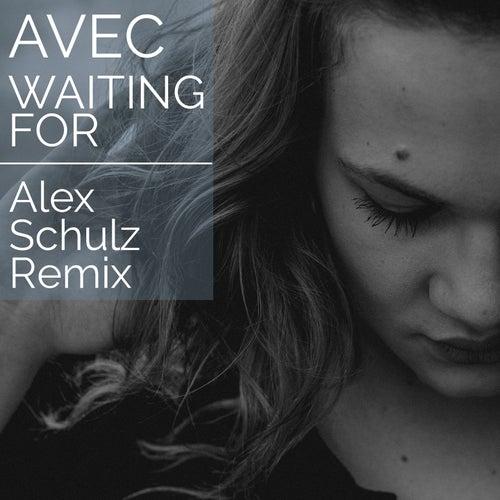 Waiting For (Alex Schulz Remix) by Avec
