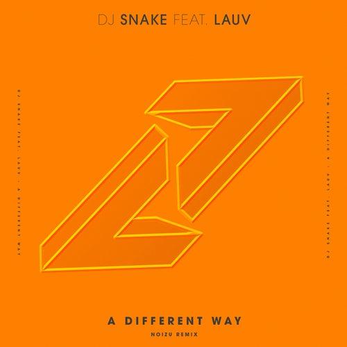 A Different Way (Noizu Remix) by DJ Snake