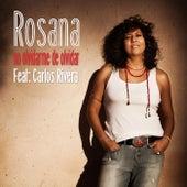 No olvidarme de olvidar (feat. Carlos Rivera) van Rosana
