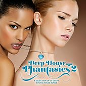 Deep House Phantasies 2 - A Selection of 25 Deep & Erotic House Tunes by Various Artists