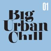 Big Urban Chill, Vol. 1 von Various Artists