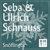 Snöflingor by Seba