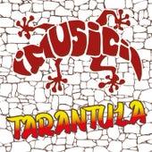 Tarantula by I Musici