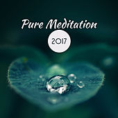 Pure Meditation 2017 by Meditation Awareness