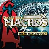 Play & Download Estás Seleccionada by Banda Machos | Napster