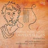 Play & Download Orpheus Elegies by Melinda Maxwell | Napster