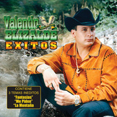 Exitos De Valentin Elizalde by Valentin Elizalde