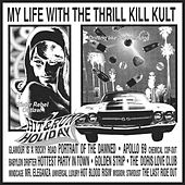 Hit & Run Holiday by My Life with the Thrill Kill Kult