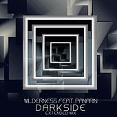 Darkside (Extended Mix) (feat. Panarin) by Wilderness