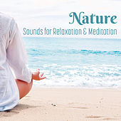 Nature Sounds for Relaxation & Meditation by Lullabies for Deep Meditation