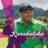Kanakaloka by Kalani Pe'a