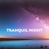 Tranquil Night by Deep Sleep Relaxation