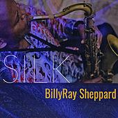 Silk by Billy Ray Sheppard