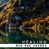 Healing New Age Sounds by Best Relaxation Music