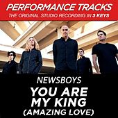 Play & Download You Are My King (Amazing Love) (Premiere Performance Plus Track) by Newsboys | Napster