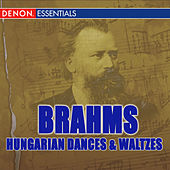 Brahms: Hungarian Dances - Waltzes - Variations on a Theme of Haydn by Various Artists