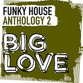 Big Love Funky House Anthology 2 - EP by Various Artists