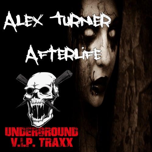 Afterlife - Single de Alex Turner