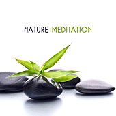 Nature Meditation by Asian Traditional Music