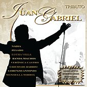 Play & Download Tributo a Juan Gabriel by Various Artists | Napster