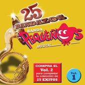 Play & Download 25 Bandazos de Pequeños Musical by Banda Pequeños Musical | Napster