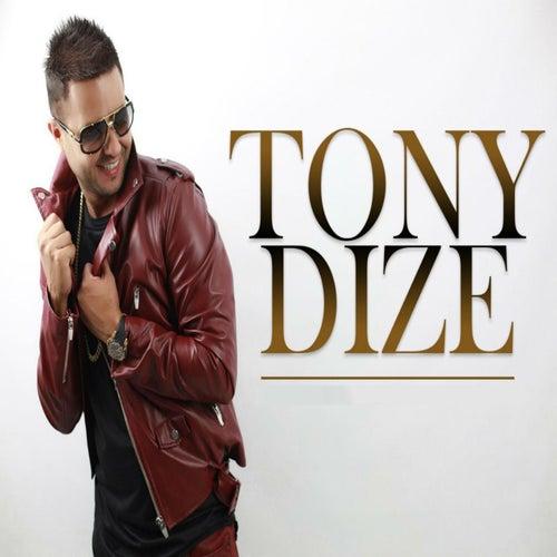 Lunatica de Tony Dize