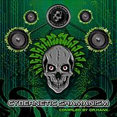 Cybernetic Shamanism - EP by Various Artists