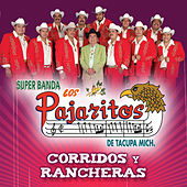 Play & Download Corridos Y Rancheras by Los Pajaritos De Tacupa | Napster